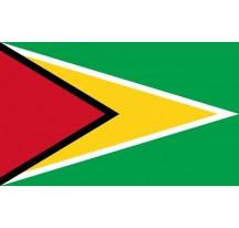Drapeau Guyana 150 x90cm
