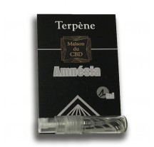 Spray 1ml Amnesia