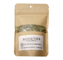 Herbe aromatique NOISETIER